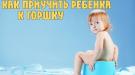 Как приучить ребенка к горшку — 10 уникальных правил из собственного опыта