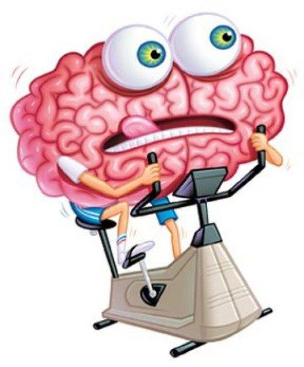 Если вы видите счастливого человека, то мозг командует: поднять настроение!