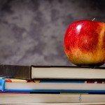 Здравый взгляд на образование
