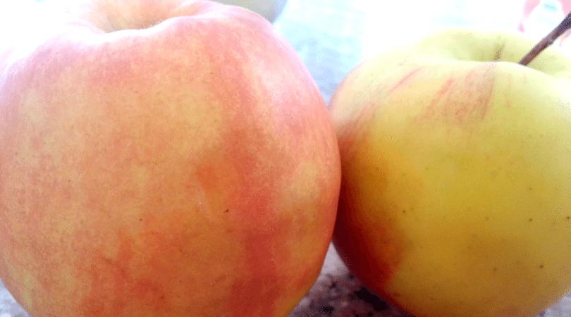 яблочные галушки5